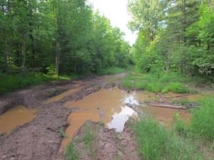 Pioneer Trail Repairs
